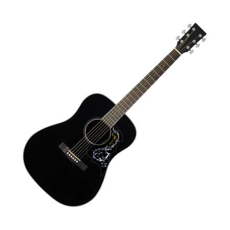 Musical instrument - Black acoustic guitar country flower bird pickguard isolated on a white background. 免版税图像