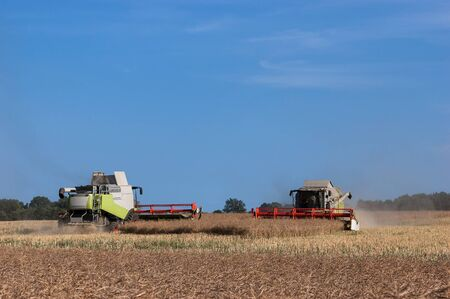 HARVEST OF RAPE - Two agricultural machinery on the field