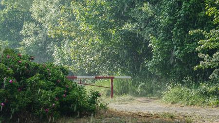 NATIONAL BORDER - Border zone in the rain Stock Photo