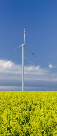 WINDPARK - Ein sonniger Tag an einem Öko-Kraftwerk und einem gelben Rapsfeld