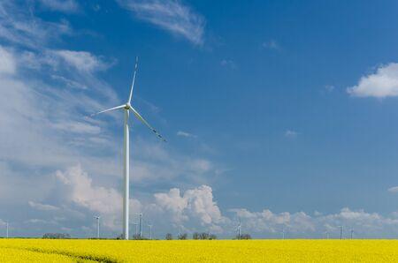 WIND FARM - Renewable energy sources in a yellow rape field Standard-Bild