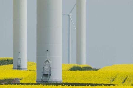WIND FARM - Renewable energy sources in a yellow rape field