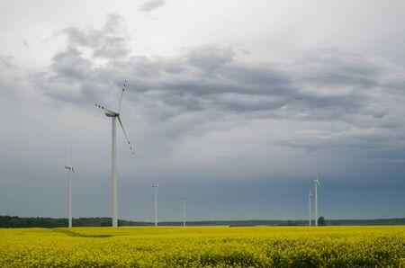 RAINY WEATHER - Wind turbine and rape field as a renewable energy source Standard-Bild