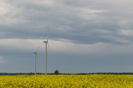 THE TIME OF ECOLOGY - Wind turbine and rape field as a renewable energy source