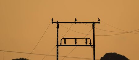POWER POLE OF AN ELECTRICITY TRANSMISSION LINE - Evening landscape over the fields
