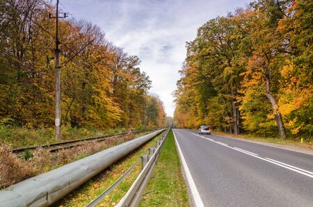 COLORFUL AUTUMN - cars on asphalt road and railway trail among beech golden forest