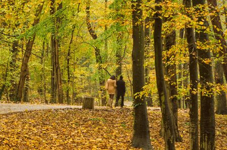 AUTUMN IN THE PARK - Two people on a walk 写真素材