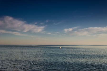 SWAN - The white bird swims in sea Standard-Bild