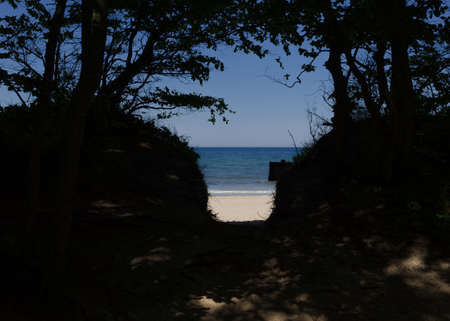 SEA COAST - A wild exit from the forest to the beach 版權商用圖片