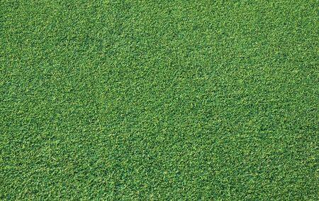 Grass achtergrond