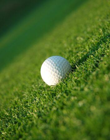 골프 공을 페어웨이 중간에 스톡 콘텐츠