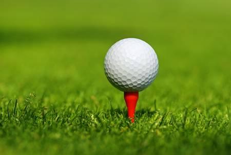 골프를 즐기자.
