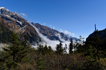 Clouds lying on the hill at the beginning of No. 1 Glacier in Hailuogou, Sichuan, China. Foto de archivo