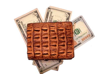 Purse of crocodile leather brown money money dolar currency on isolated on white background.