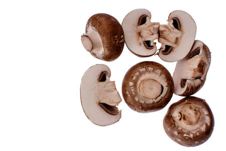 champignons: Gray mushrooms champignons isolated on a white background.