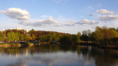 Beautiful view of the lake in the park and trees