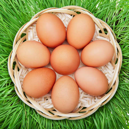 Brown chicken egg in a wicker basket on a background of grass photo