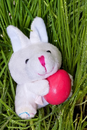bunny holding an Easter egg on green grass background Stock Photo - 12845885