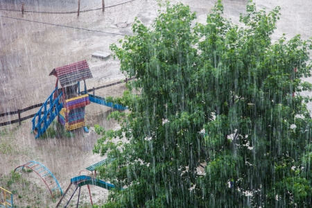 Heavy rain against the tree and a children
