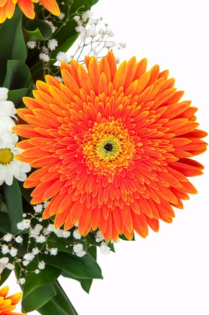 Fragment of bouquet of orange gerberas isolated on a white background photo