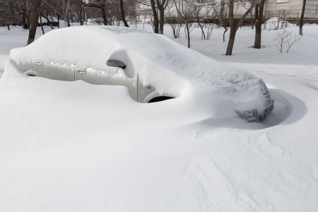 snowbank: Cars covered in snow after a blizzard