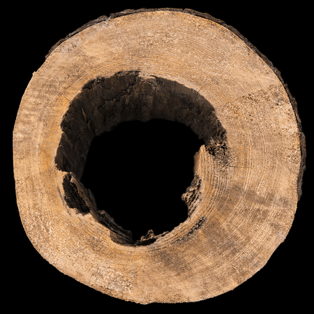 Slice of tree trunk with a hole on black background Stock Photo - 25231129