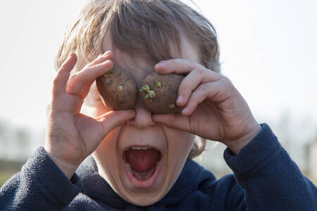 hellion: Portrait of boy playing with sprouted potatoes Stock Photo