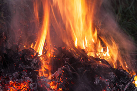 Flames of fire on a dark background at night photo