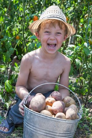 Glückliche junge Jungen, die Eimer mit Kartoffeln Lizenzfreie Bilder