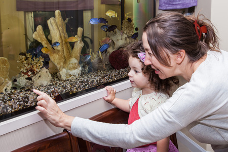 Grandmother and granddaughter looking at fishes in home aquarium