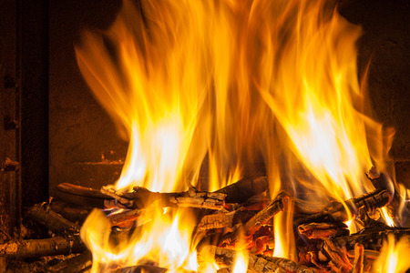 Burning firewood in the fireplace closeup photo