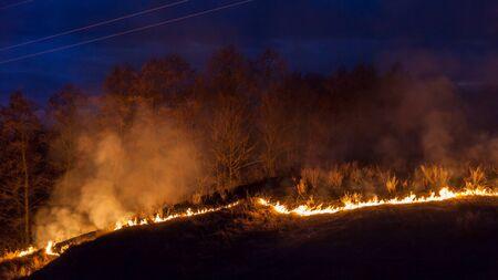 bushfire: Large bright fire of bushfire at night
