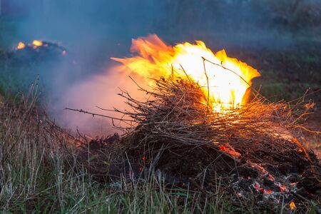strong wind: Flame fire on strong wind in the field evening Stock Photo