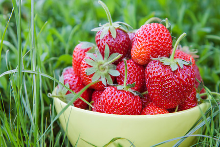 Bowl of ripe juicy strawberries on green grass
