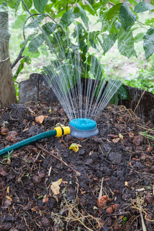 vermiculture: Humidification compost pile using the spray, preparation of organic fertilizers