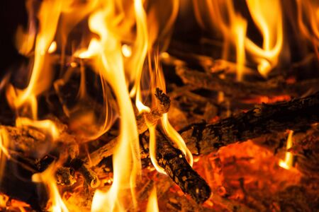 combustible: Burning firewood in the fireplace closeup, texture of fire and flame, dark background Stock Photo
