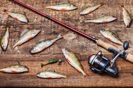 Spinning rod with reel, bait and bass fish on wooden background, top view