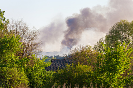 Smoke of a forest fire from afar in the countryside