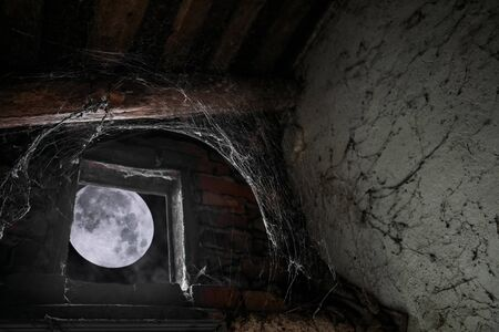 Moonlight illuminates a cobweb through the window of an abandoned building at night
