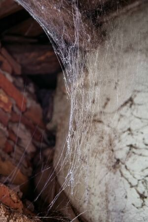 Cobweb or spider web in ancient abandoned house
