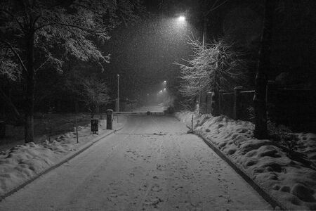 Monochrome winter night landscape with falling snowflakes, frosty winter trees and street lights illuminates barrier