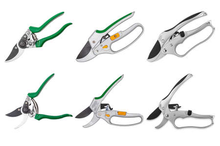 Set of professional garden pruner or scissors or secateurs isolated on white background Foto de archivo