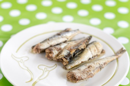 sardine can: Marinated sardines served on the plate blurred background