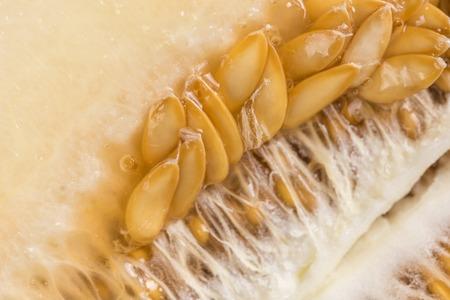 cancellous: Closeup macro melon pits on the wooden board.