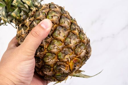 Fresh whole pineapple in the hand above white background. Fresh and healthy fruit. Healthy concept food with fruits.
