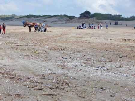 horse carriage and people on the beach Imagens