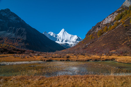 Autumn scenery in Yading Nature Reserve, Daocheng county, Ganzi Tibetan Autonomous Prefecture, Sichuan province of China. The holy peak Yangmaiyong (Jampelyang) can been seen in the background Stok Fotoğraf - 111359300
