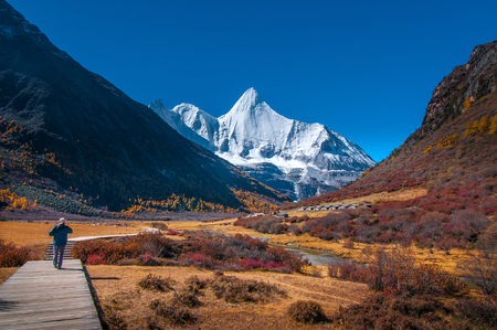 Autumn scenery in Yading Nature Reserve, Daocheng county, Ganzi Tibetan Autonomous Prefecture, Sichuan province of China. The holy peak Yangmaiyong (Jampelyang) can been seen in the background.