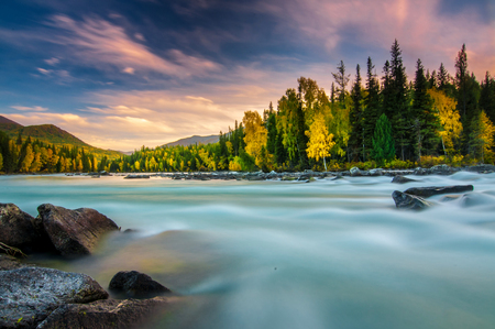 River flowing out of the Kanas Lake at Autumn, Xinjiang, China, The tree color is changed to yellow, Sky beautiful on the background. Stok Fotoğraf - 111359313