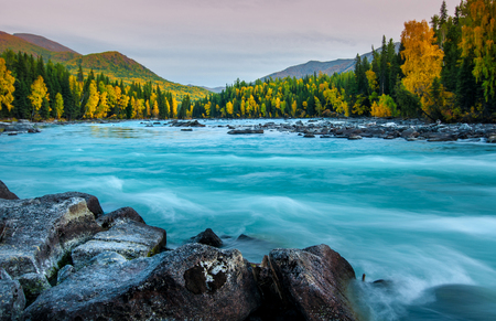 River flowing out of the Kanas Lake at Autumn, Xinjiang, China, The tree color is changed to yellow, Sky beautiful on the background. Stok Fotoğraf - 111359314